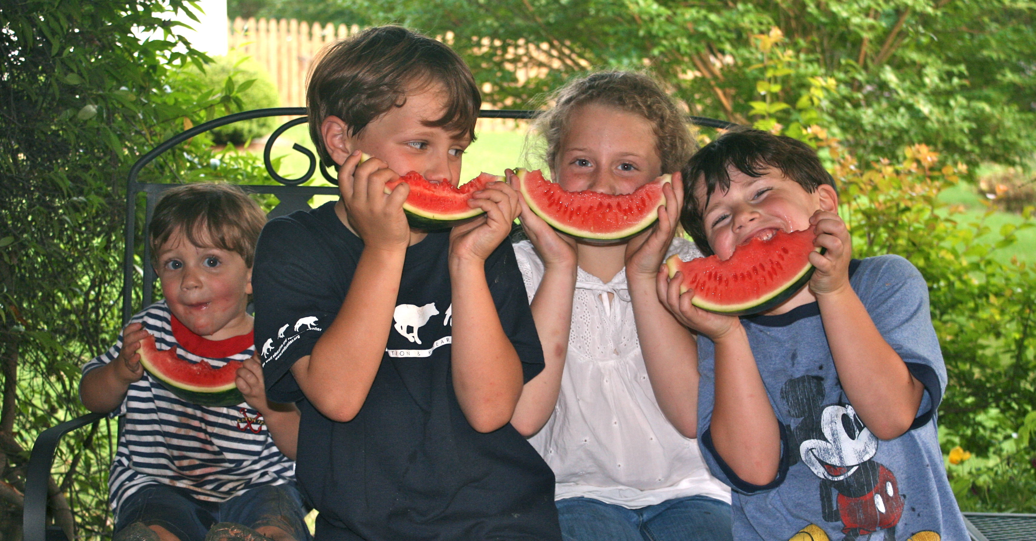 Watermelon Season Is Here Magnolias And Meltdowns